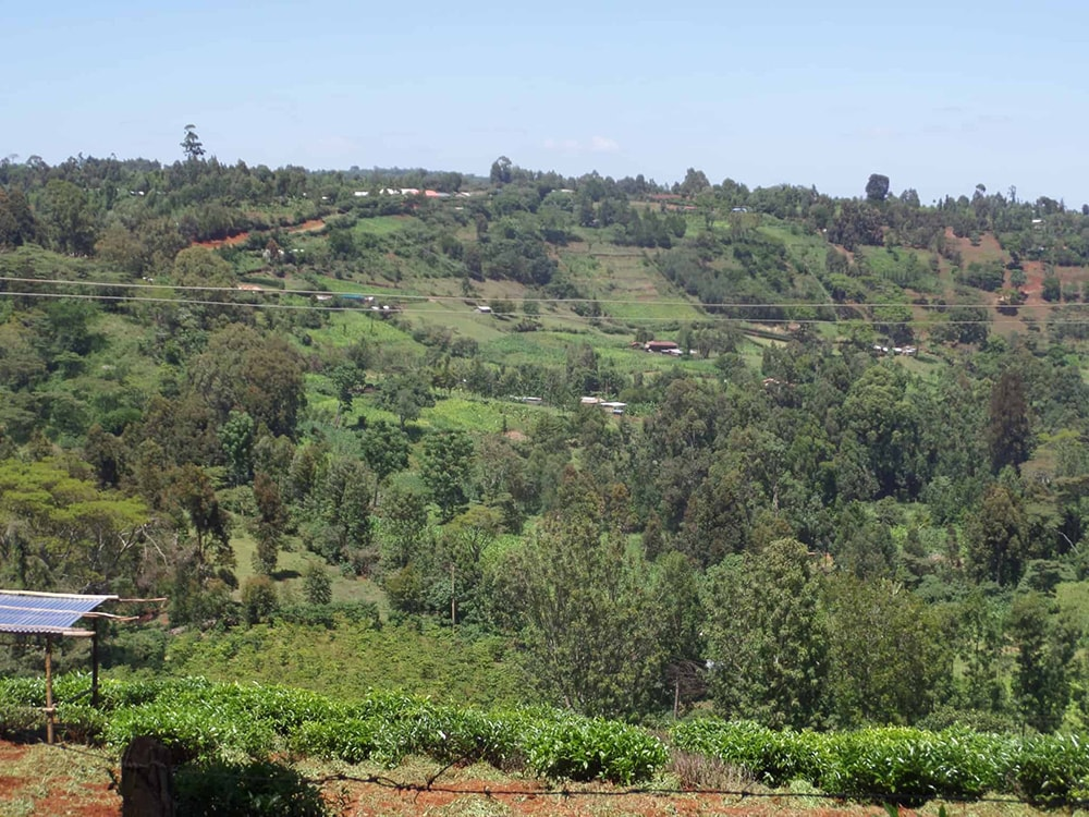 Scenery in Nyeri, Kenya