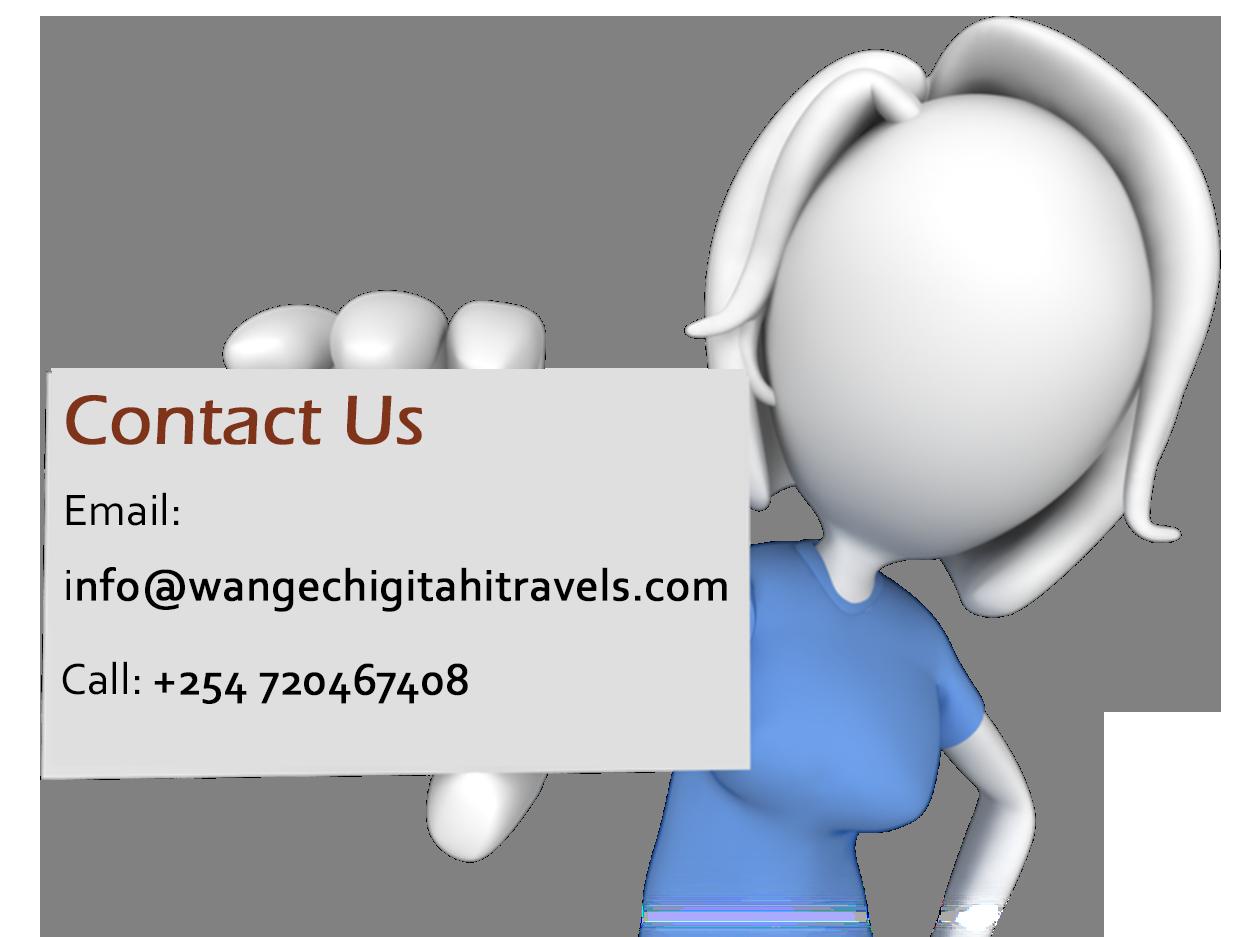 contact-wangechi-gitahi