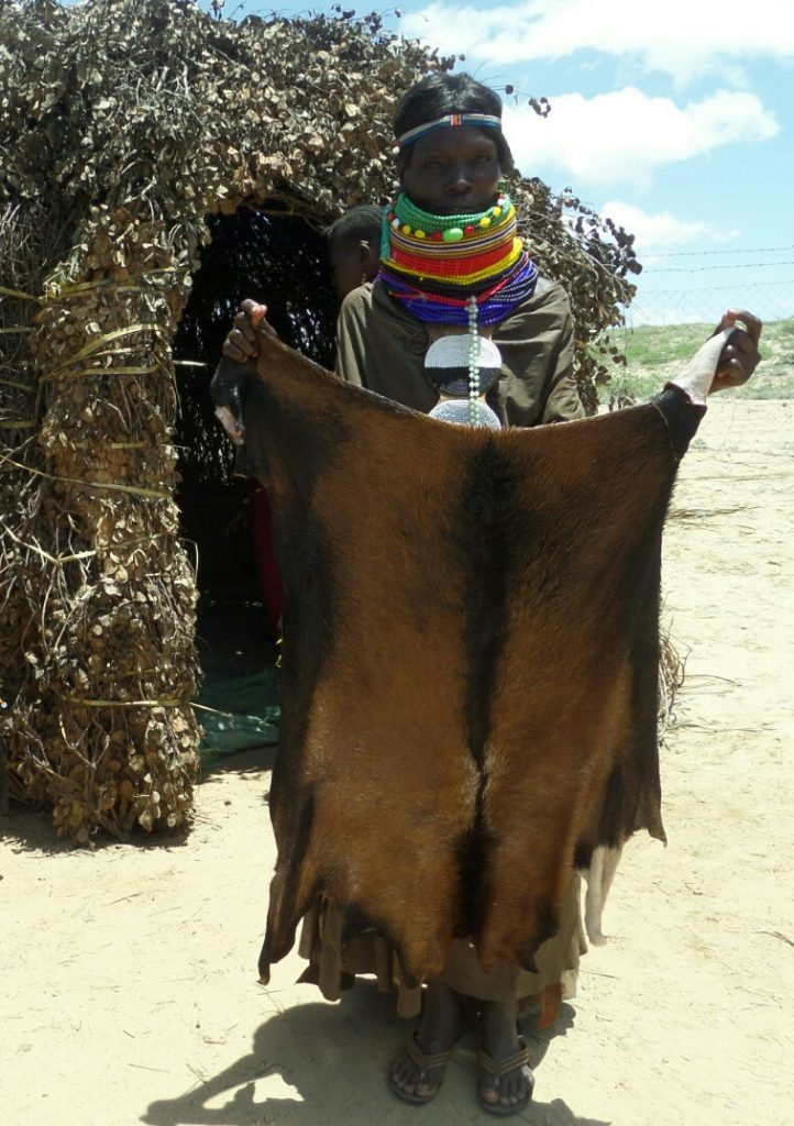 turkana lady holding a goat hide