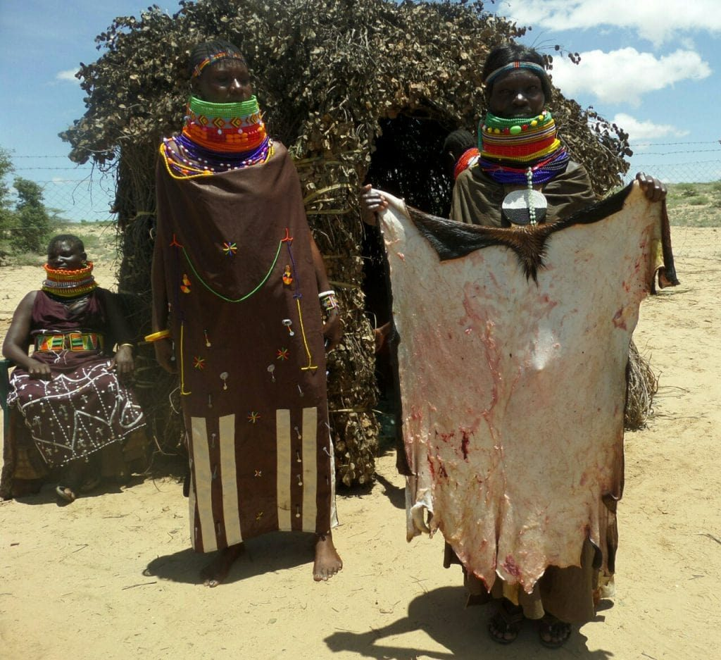 turkana woman holding goat hide-wangechi gitahi travels